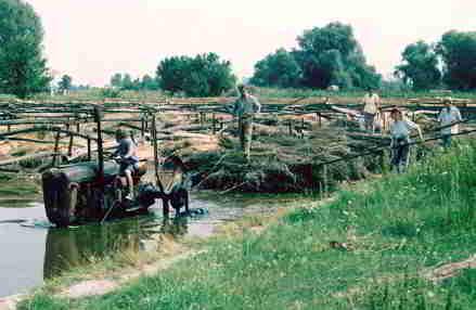 hemp water retting